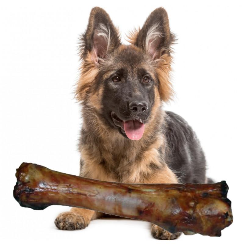STOPA WOŁOWA Naturalna Duża Kość dla Psa XXL 30 cm