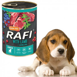 Rafi Junior z JAGNIĘCINĄ...