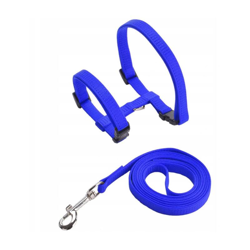 LEKKIE SZELKI Regulowane + SMYCZ dla Psa Kota PETSTORY (Niebieski)