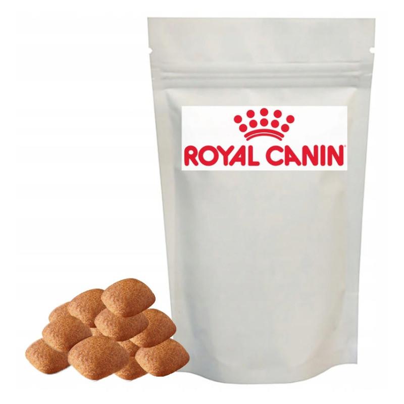 Royal Canin Golden Retriever Adult - Karma Sucha dla Psów Dorosłych Rasy Golden Retriver 1kg