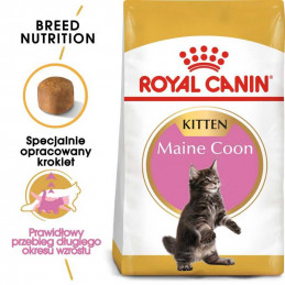 Royal Canin FBN Maine Coon...
