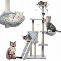 Drapak dla kota – konstrukcje dla małych oraz starszych kotów