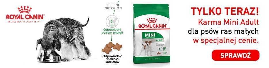 Royal Canin Promocja